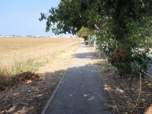 The long road leading to my village, Shavei Zion, in Western Galilee, Israel. It's a peaceful sunny day, Hamas wasn't shooting at us. Hezbollah has, though. Katyusha rockets landed in the field on the left in 2006.